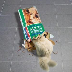 Hundemat – Kopi